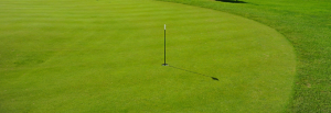 Putting-Green-TinCup